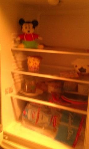 холодильник хомячка