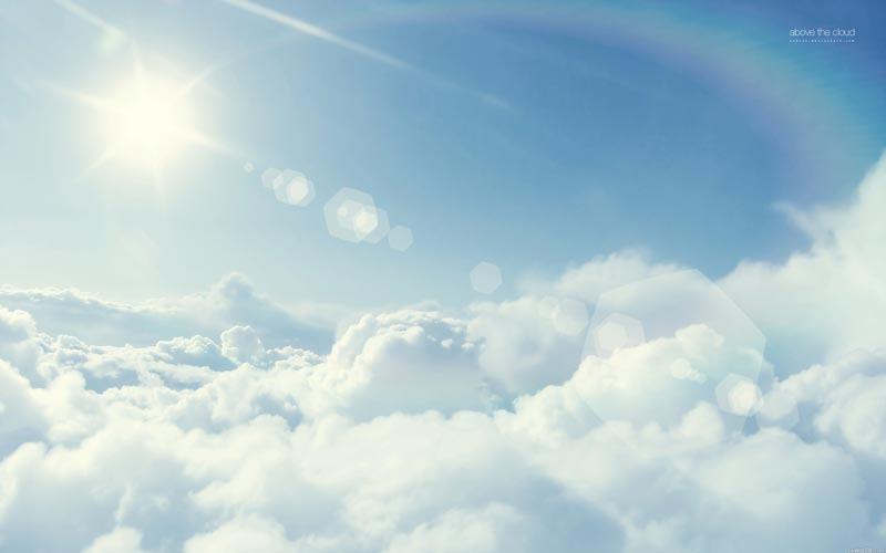 Попадают ли души хомячков в рай?